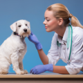 Animal Care Course