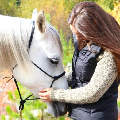 Equine Behaviour and Psychology Course